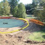Edible Garden – Pond and Wetland Construction