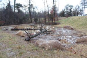 1-11-13 EG Wetland