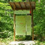 Celebrate National Trails Day at Bernheim