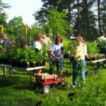 Spring Plant Sale this Saturday!