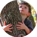 Bernheim Big Tree Hug Challenge