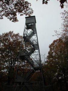 Climb Bernheim's Historical Fire Tower & Admire Fall's Beauty