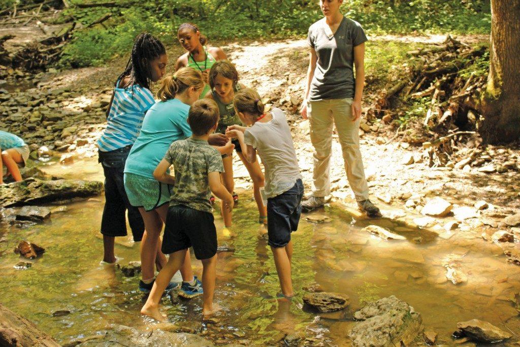 Nature-based Education Intern