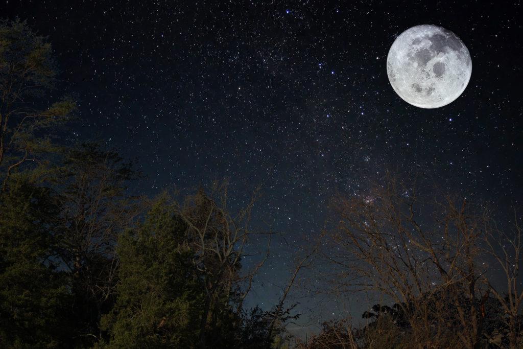 "Full ""Falling Leaves"" Moon Hike"