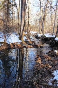 The Jim Beam Natural Water Sanctuary Alliance at Bernheim