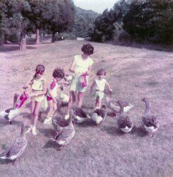 My Bernheim Story: Alice Welch