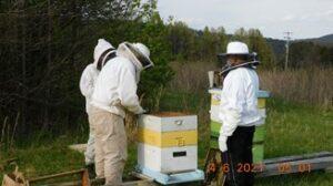 Meet Bernheim's Volunteer Bee Team
