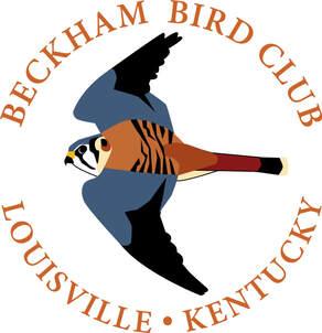 Beckham Bird Club