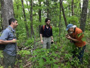 Cedar Grove Wildlife Corridor's Birdsongs