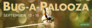 Bug-a-Palooza